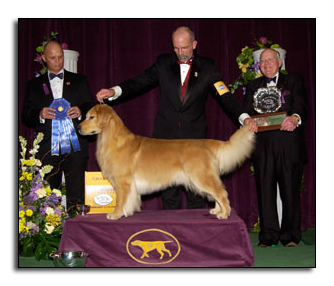 Tristan's father Andy taking a Group 1 At Westminster 2006
