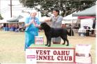Rika taking BOB at her first show
